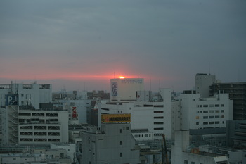IMG_1463.jpg